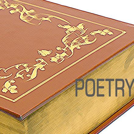 IP BOOKS poetry